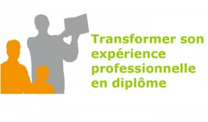 TRANSFORMER SON EXPERIENCE PROFESSIONNELLE